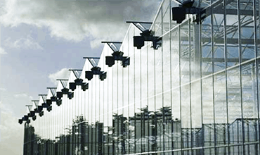 Commercial Glasshouses - Venlo