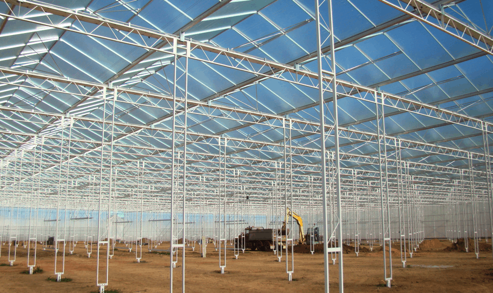 Commercial Glasshouse Roofing Options