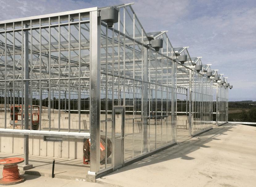 Glasshouses Apex Greenhouses
